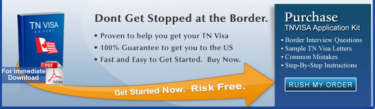 get approved with tn visa expert